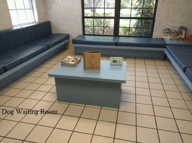CAC DOG WAITING ROOM